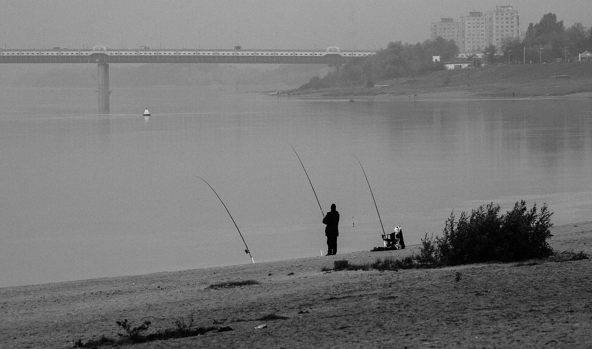Рыбка в тумане