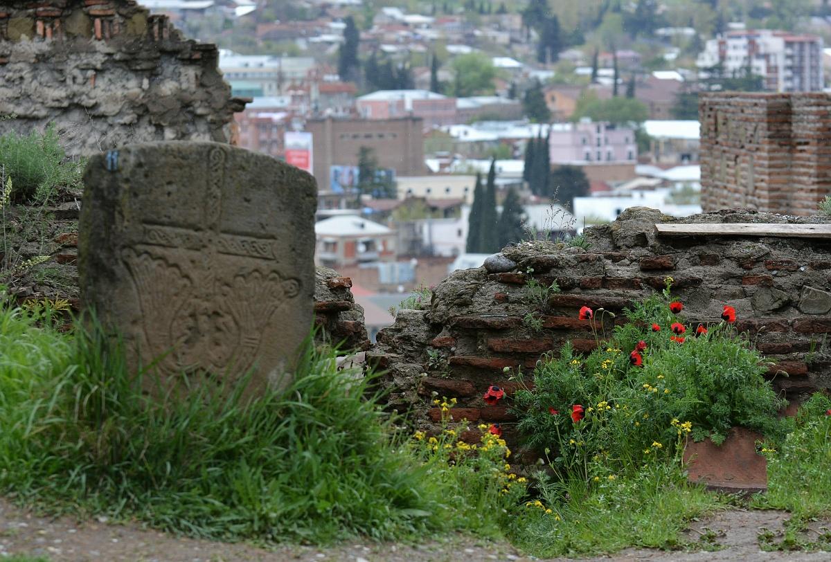 Маки у стен крепости