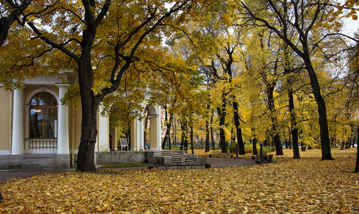 Осень, какая она должна быть