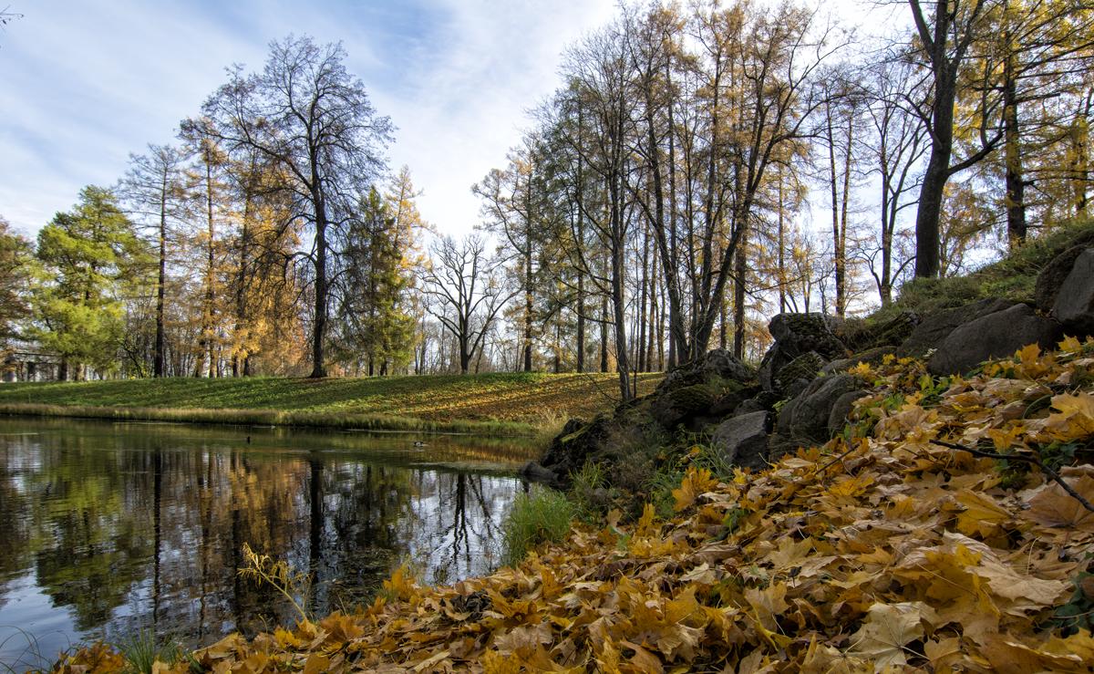 Осень по Питерски