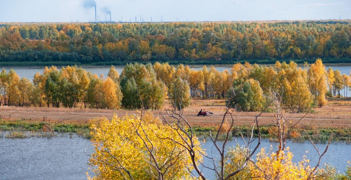 Осень 2010 год