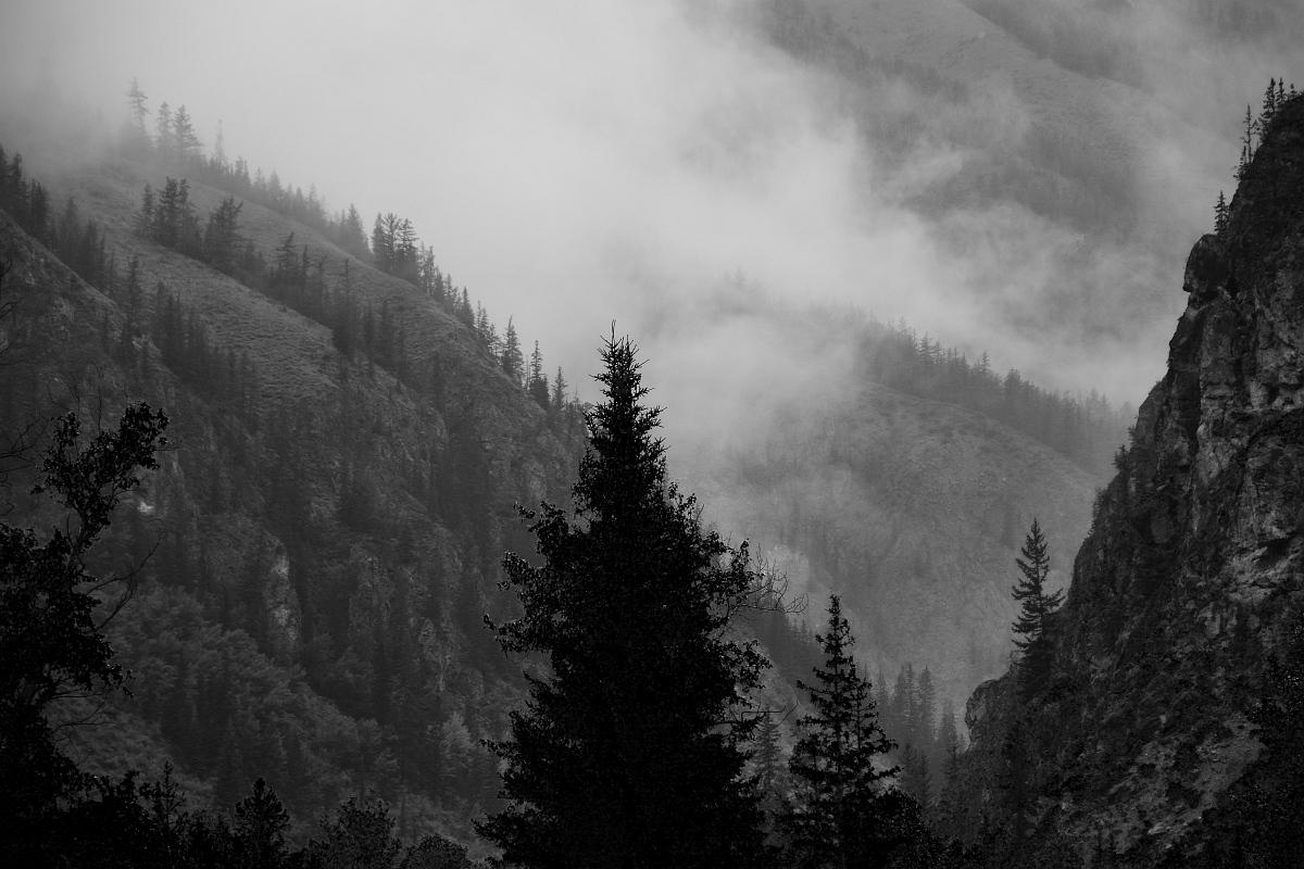 Тёмные вершины