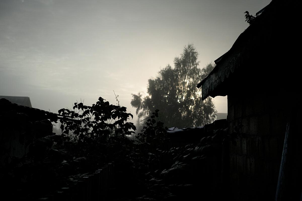 Туман, утро, дождь