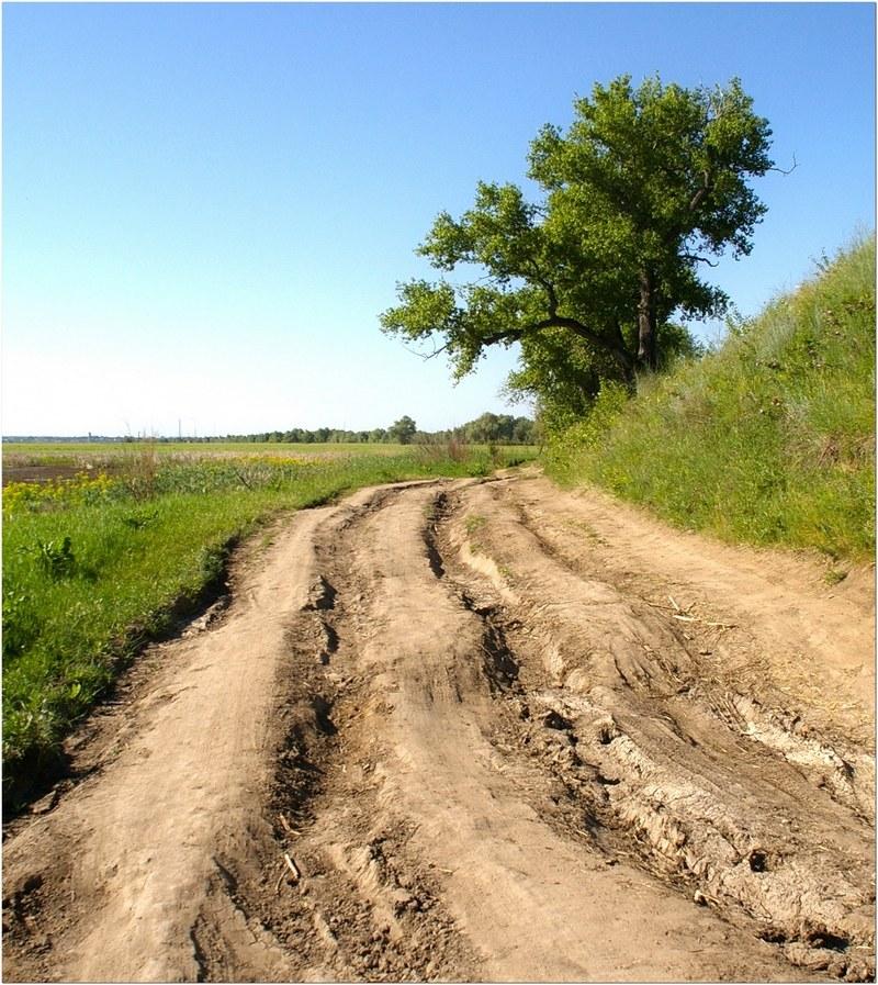 Дороги по которым мы едем