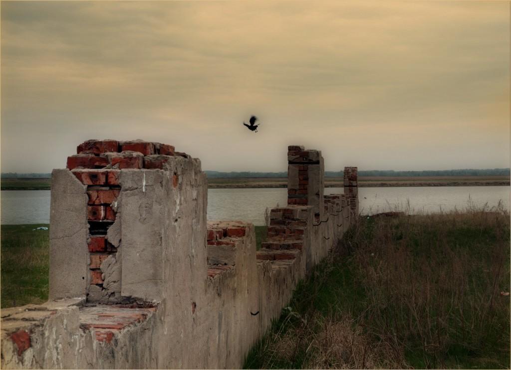 Птица, сидевшая на развалинах усадьбы, завидев меня, улетела. Это был старый, мудрый ворон