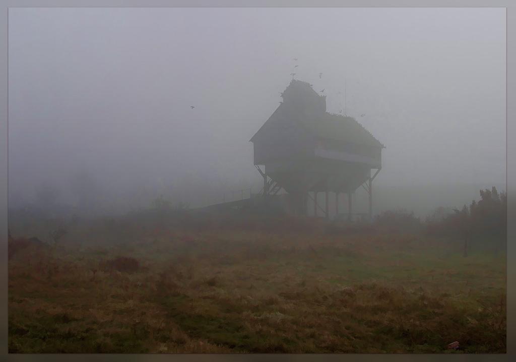 Сквозь туман я увидел странное строение
