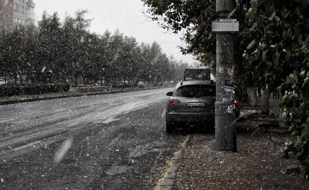 Первый снег_3