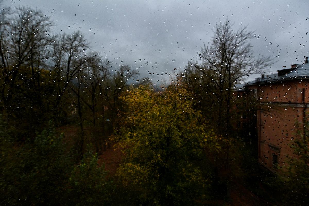 Новая осень