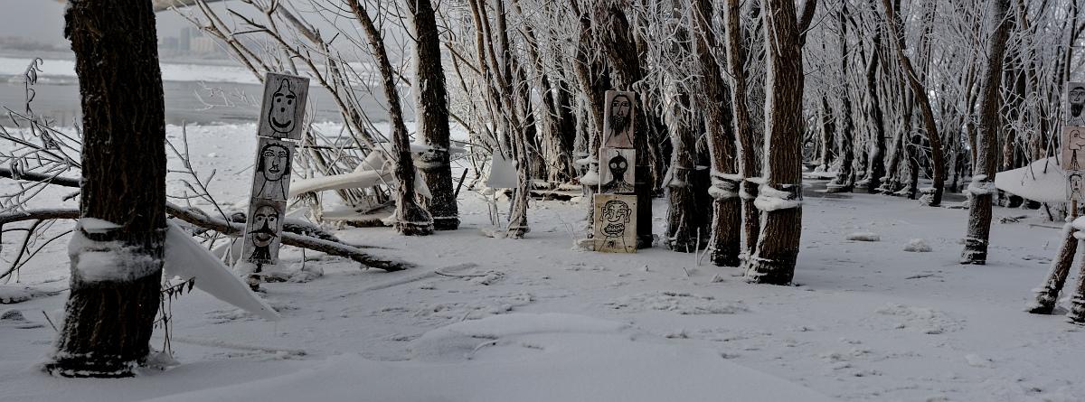 Странный лес _панорама