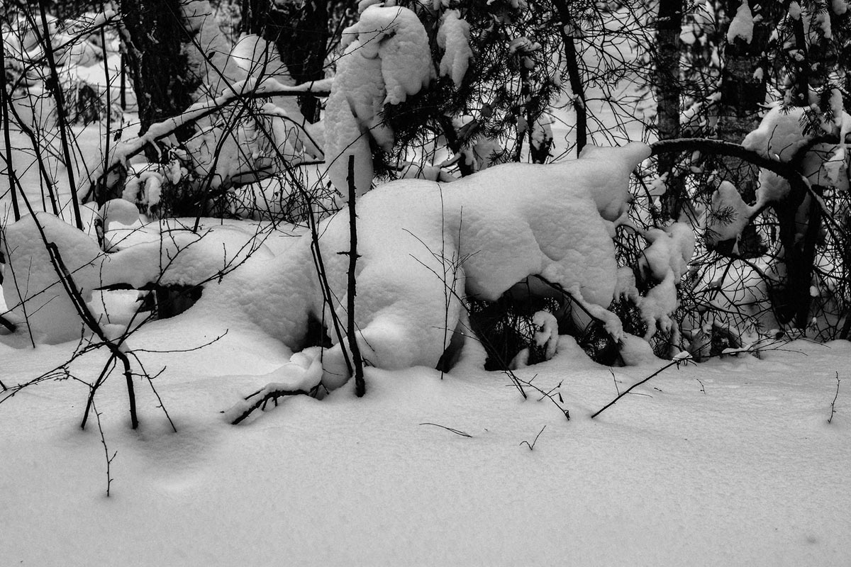Зима 2015-5