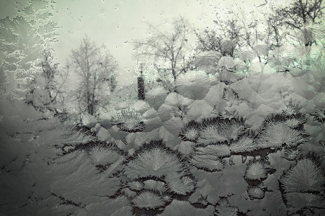 Ноябрь за окном