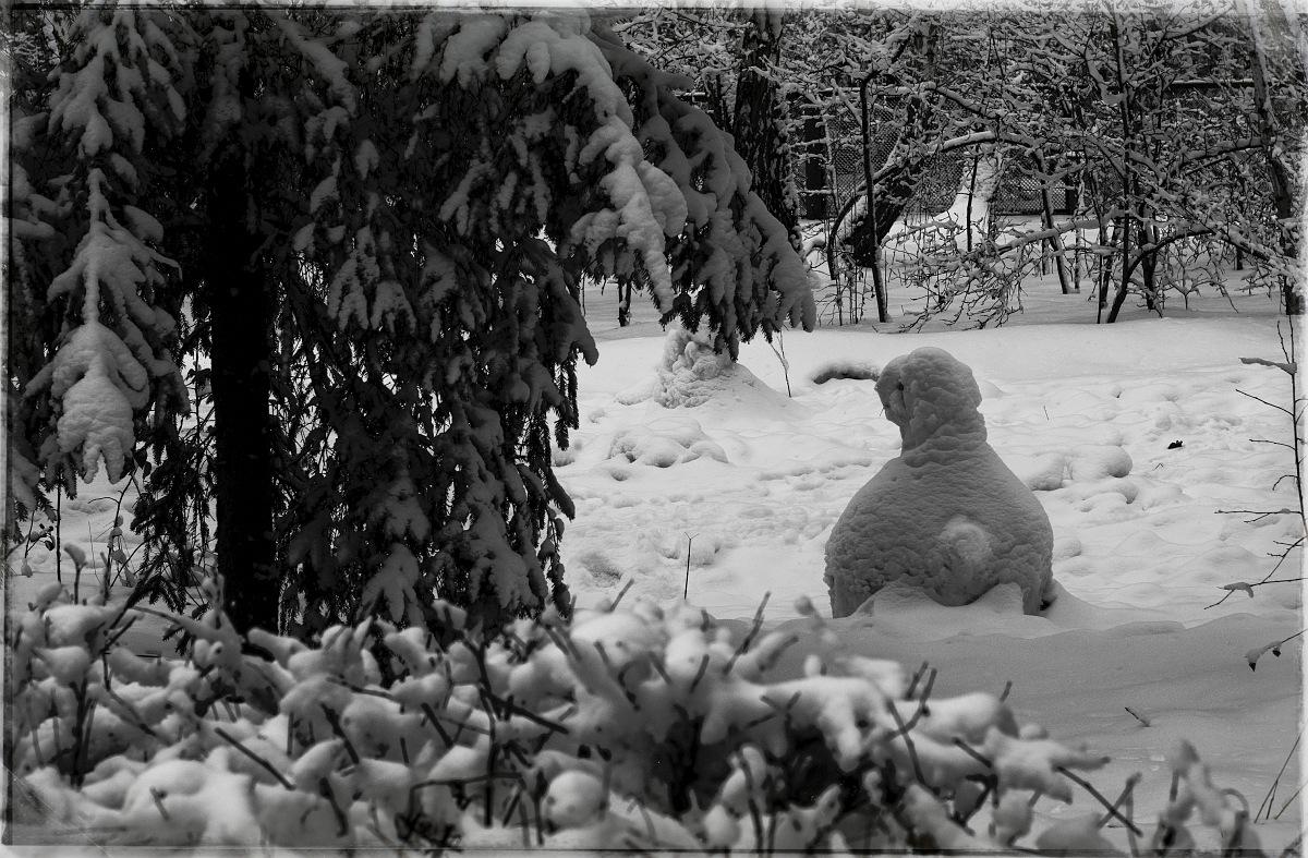 Зимние существа 2015 года