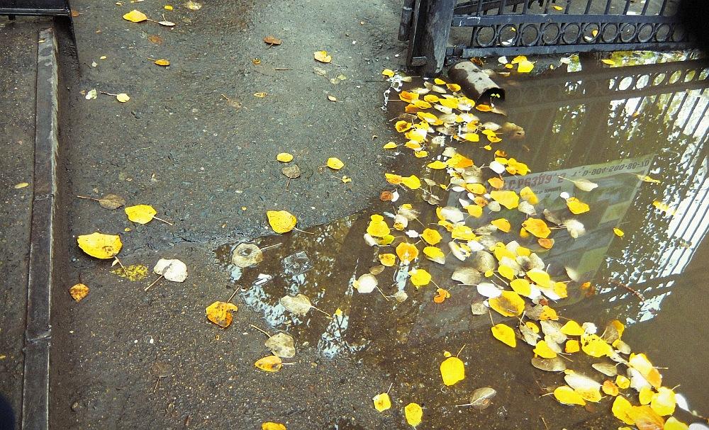 FUJIFILMS XF1_ Один день осенью-1